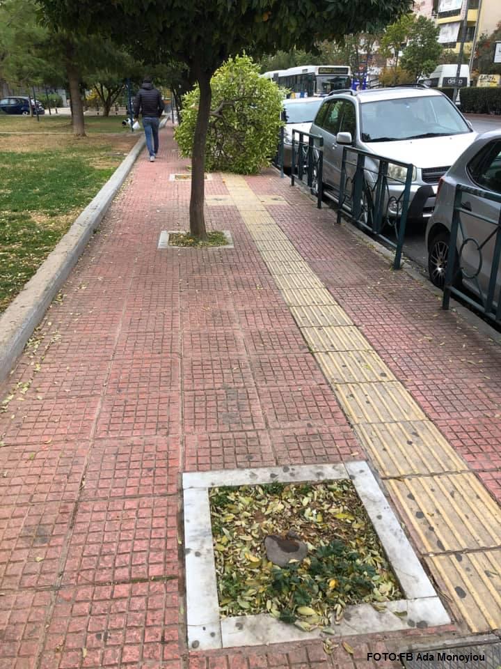 Γαλάτσι: Ασυνείδητοι κόβουν με τσεκούρι δέντρα σε κεντρικούς δρόμους - Μήνυση από τον δήμαρχο (pics)